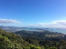 Coromandal, NZ